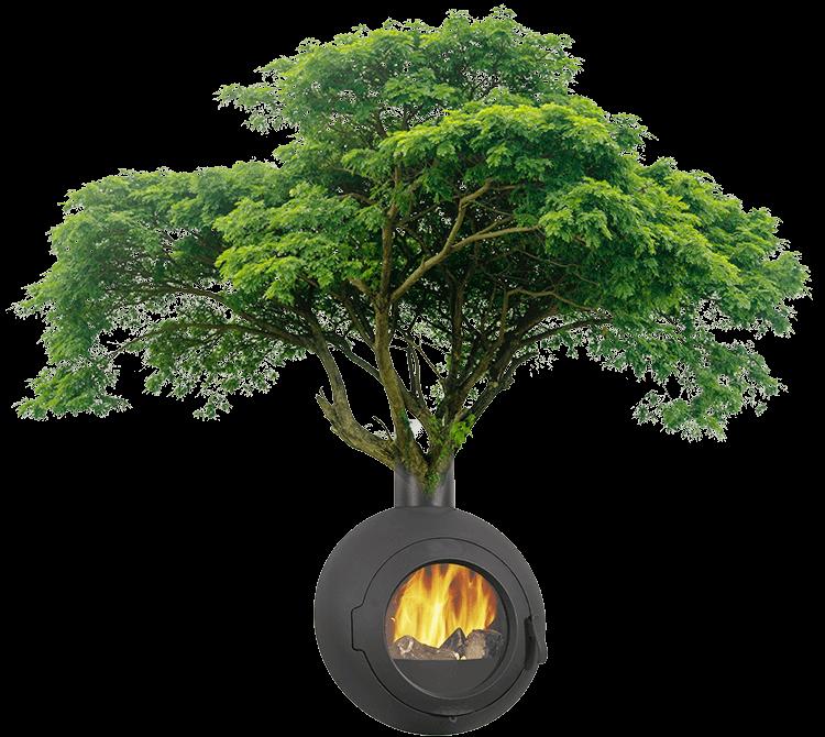 Arbre et chauffage à bois