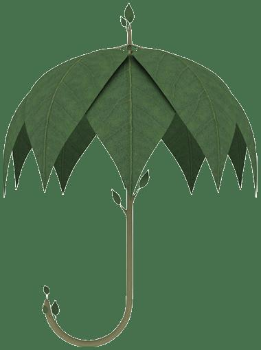Réalisez un bon ramonage